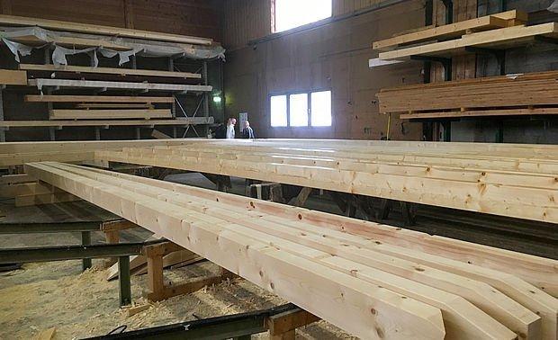 Holzi Holzi Holz - überall Holz 13.11.2016